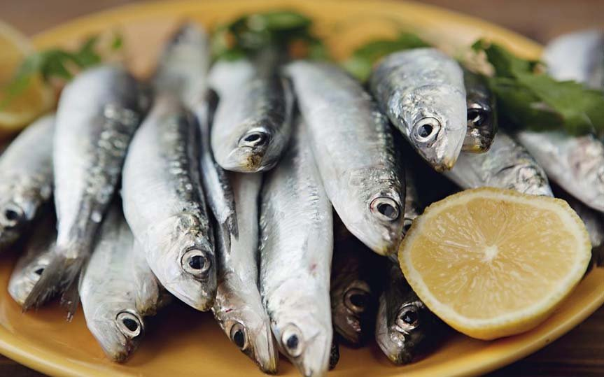 sardines for healthy heart